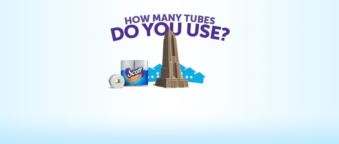 How many toilet paper tubes do you use?