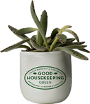 Good Housekeeping Green Plant Era 6 Image.